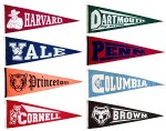 ivy_league_pennant_set_9152big.jpeg